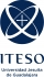 ITESO - Teaching English to Spearkers of Other Languages